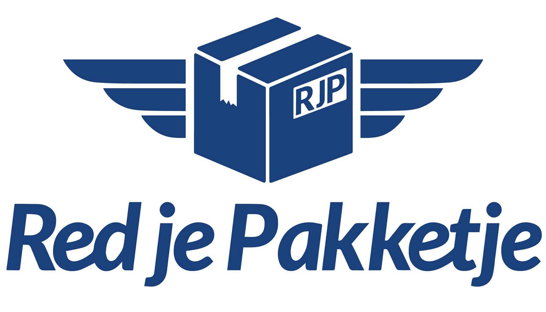1nP Logo