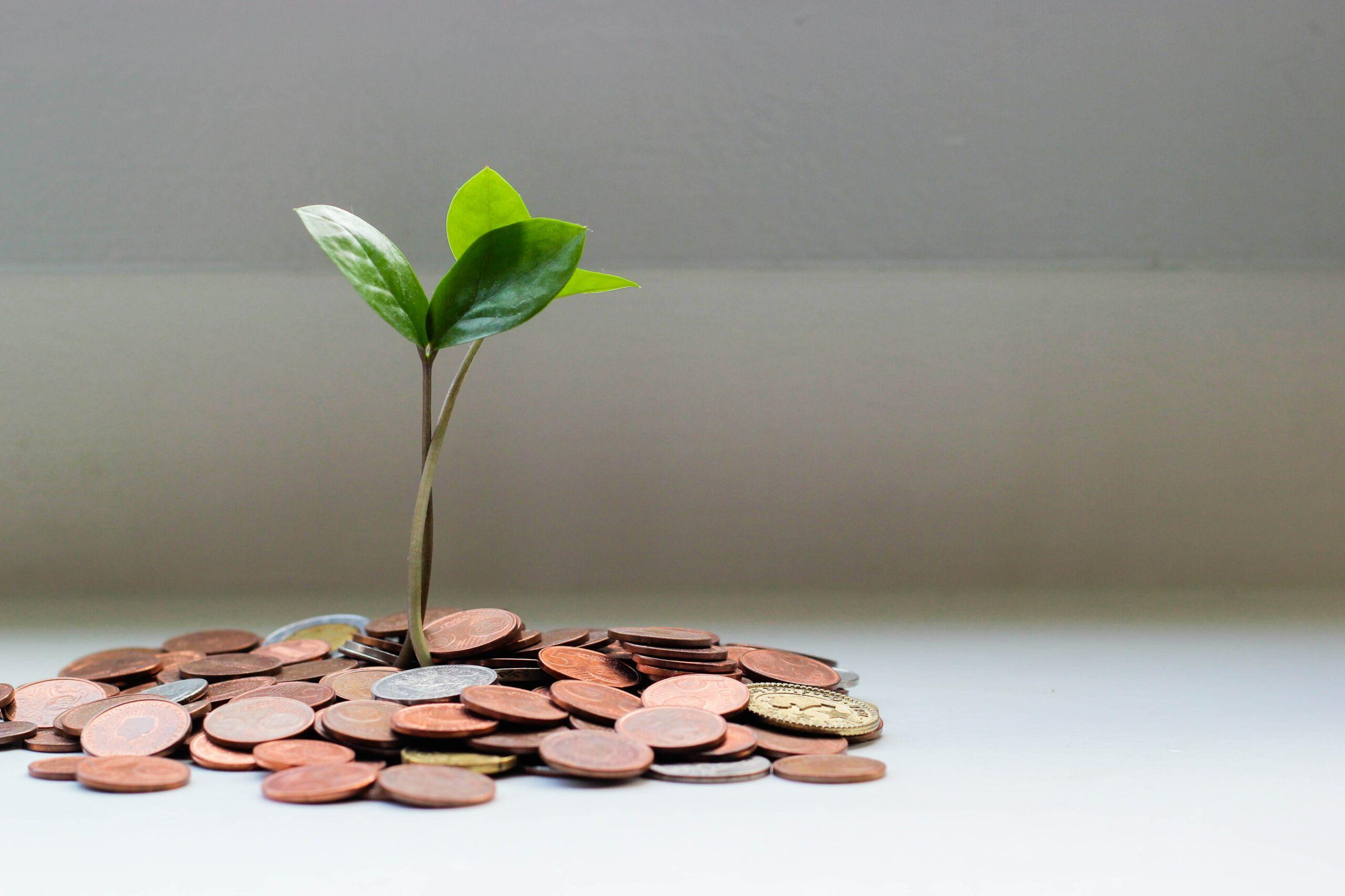 donaties-goed-doel-sdg-jorit-hajema.jpg